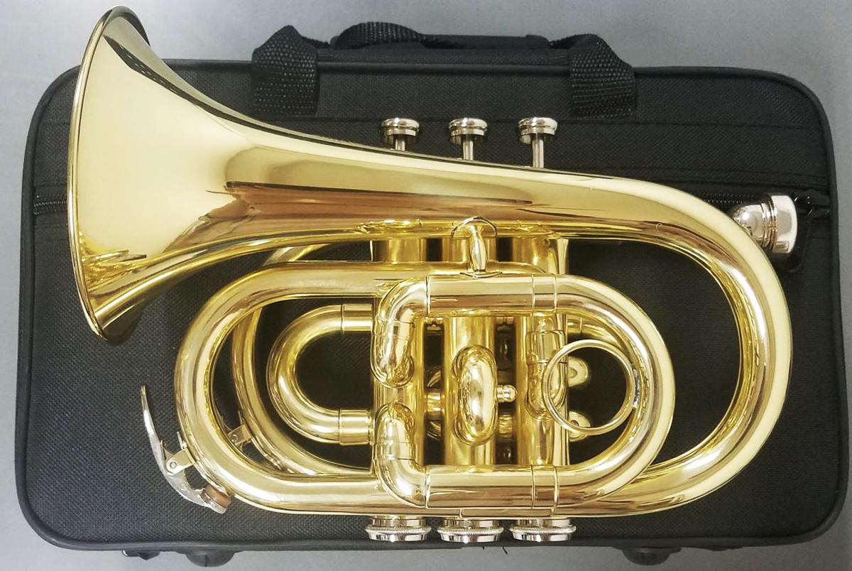 HSZ-863 ポケットトランペット 新品 管体 B♭ ゴールド ミニ トランペット 管楽器 mini pocket trumpet gold 持ちはこび ポケトラ 送料無料【北海道/沖縄/離島不可=送料実費請求】