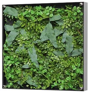 GREEN GREEN 観葉植物 3305 インテリア インテリア 造花 観葉植物 インテリアデコ, アン スリール:a0e99b04 --- acessoverde.com