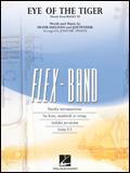 楽譜 アイ・オブ・ザ・タイガー 04002903/フレックスバンド(最小5人から吹奏楽編成まで演奏可能)/G2~3/輸入楽譜(T)