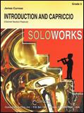 楽譜 序奏とカプリチオ/カーナウ作曲 44000074/クラリネットソロと吹奏楽譜(T)/G3/T:2:30