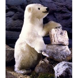 ケーセン社 ぬいぐるみ 限定500 白クマ どろんこシュムーデル/Schmuddel