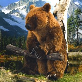 ケーセン社 ぬいぐるみ 限定500ブラウンベア モヘア / BROWN BEAR