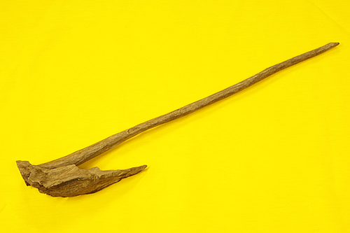 タニ沈香原木 マレーシア産
