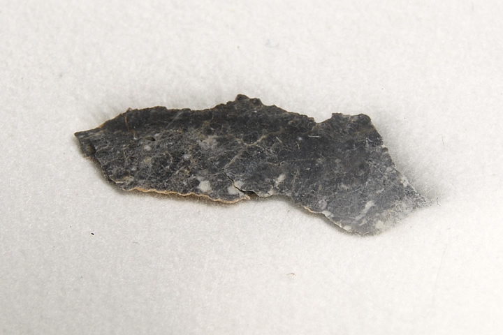 【正規品質保証】 月隕石 400 リビア産 Gani Dar al Gani 月隕石 400, 双海町:44ef463f --- mundoacademico.com.co