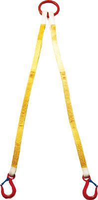 [スリング(繊維ベルト・ワイヤ)]【送料無料】大洋製器工業(株) 大洋 2本吊 インカリフティングスリング 5t用×2m 2ILS 1S(1個入)【473-0216】