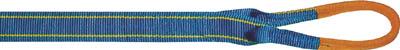[ベルトスリング]東レインターナショナル(株) シライ シグナルスリングHG 両端アイ形 幅50mm 長さ5.0m SG4E50-5 1本【753-2725】