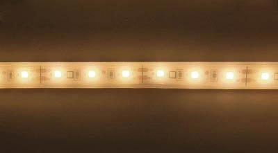 [照明器具]【送料無料】トライト(株) トライト LEDテープライト 16.6mmP 5000K 3M巻 TP503-16.6PN 1巻【818-6560】【代引不可商品】【北海道・沖縄送料別途】【smtb-KD】