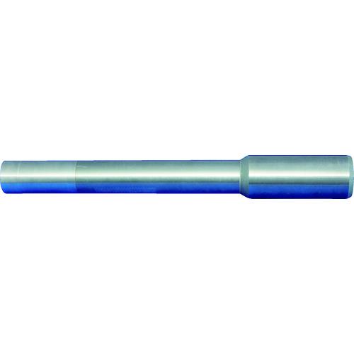 [ミーリングエンドミル]【送料無料】マパール(株) マパール head holder CFS 101 CFS101N-06-020-ZYL-HA10-S 1個【北海道・沖縄送料別途】【smtb-KD】【775-5261】