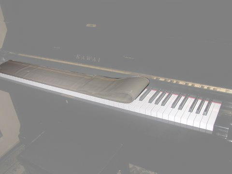 モイスレガート 鍵盤用(ピアノ用)/湿度調整剤【送料無料】【smtb-KD】:-p2