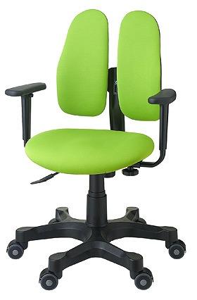 DUOREST デュオレスト DRシリーズ パソコンチェア PCチェア オフィスチェア 学習チェア 学習椅子 ゲーミングチェア トレーダー 株 チェア 椅子 イス いす 背もたれ デスクワーク 長時間 疲れにくい 腰 背筋 サポート グリーン 緑 DR-290 3NLG1