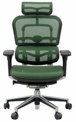 エルゴヒューマン プロ ハイバック ハイブリット機能 パソコンチェア PCチェア ゲーミングチェア ゲーム 株 オフィスチェア 学習椅子 学習チェア 仕事用チェア 事務いす 事務椅子 チェア 椅子 イス 高級感 かっこいい 緑 グリーン EH-HAM-HB KM14