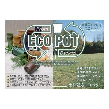 輸入 3 300円以上で送料無料※一部地域除く エコポットECO 新商品 5個セット POTブラウン BEL901BR