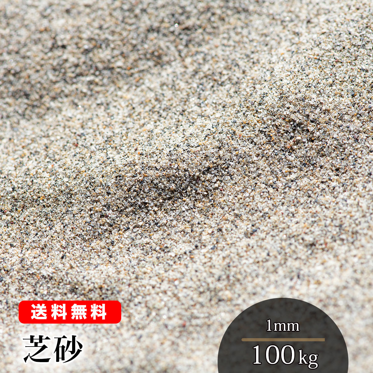 【送料無料】100kg 芝砂 1mm(20kg×5)芝生用 目砂 乾燥砂 芝生育成 芝生養生 国産 芝生の砂 芝生の砂 芝土 目土 園芸 造園 ガーデニング 山砂 静岡県産