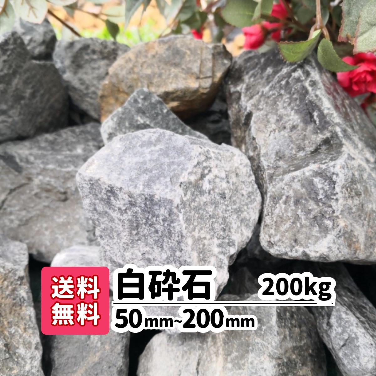愛知県産の白砕石です。硬い石質で重量感がある大きな石です。全体的に白色で落ち着いた印象のお庭になります。 【送料無料】200kg 白砕石 50mm~200mm ロックガーデン 庭 アプローチ おしゃれ ガーデニング アクアリウム 大きい石 駐車場 洋風 メダカ 熱帯魚 水槽レイアウト 白い石 砂利 ホワイト リフォーム 造園 庭園 園芸 花壇 レイアウト 割栗石