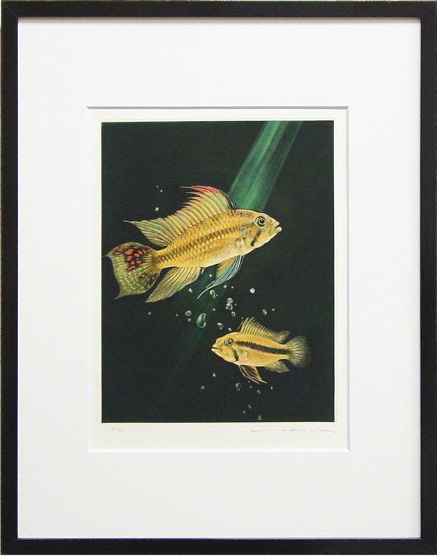 猪飼 正『熱帯魚』銅版画(カラーメゾチント)