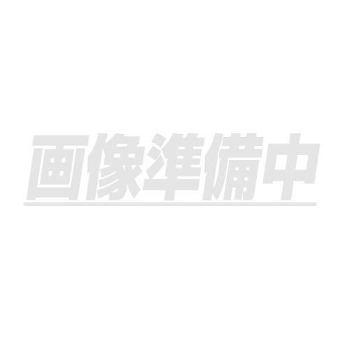 下水管ミラー 1型 4m4本継 G9-1-4 [送料無料]