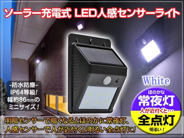 Daikon oroshi chokuhanbu rakuten global market solar lights solar battery powered motion sensor wall light night lights and all lights on auto switch white workwithnaturefo