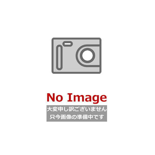 [#FJ-XAICP6040W] [間口600mm・全高400mm用] レンジフード用センターパーツ カクダイ [KAKUDAI] [ホワイト]