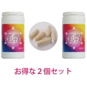 【送料無料】お得な2個セット!トリニティー酵素 氣精(オーブ)生きた酵素サプリメント