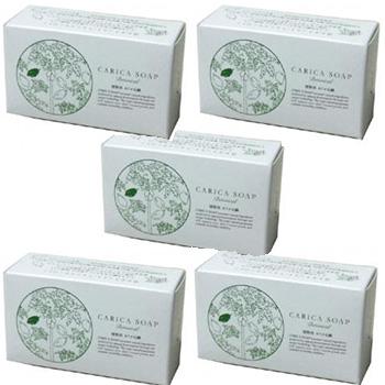 【送料無料】お買い得 100g 5個セット 植物性カリカ石鹸 100g 化学物質等を一切加えていない石鹸素地に、パパイアの発酵食品である『カリカセラピPS-501』を贅沢に配合した石鹸です 5個セット。, パソコンショップ ぱそくる:a60125d3 --- rods.org.uk