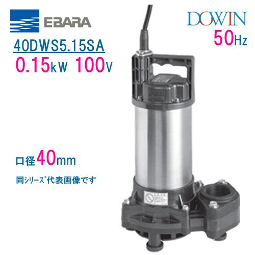 エバラ 樹脂製汚水・雑排水用水中ポンプ 40DWS5.15SA 0.15kW 100V 50Hz 口径40mm 荏原製作所製水中ポンプ EBARA ダーウィン DOWIN