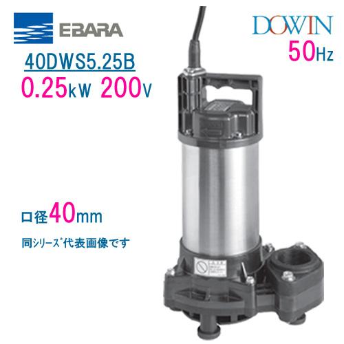 エバラ 樹脂製汚水・雑排水用水中ポンプ 40DWS5.25B 0.25kW 200V 50Hz 口径40mm 荏原製作所製水中ポンプ EBARA ダーウィン DOWIN