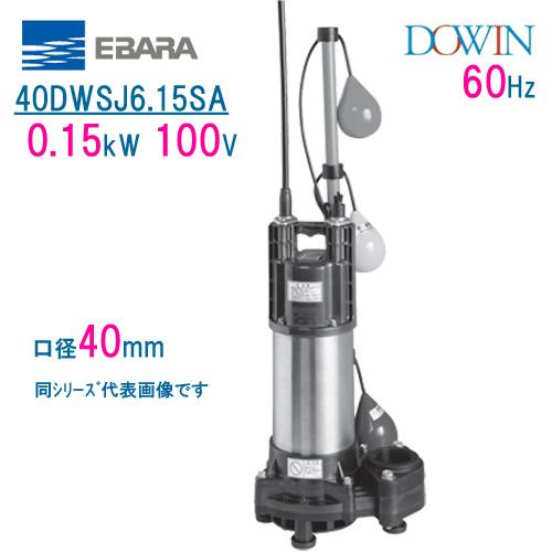 エバラ 樹脂製汚水・雑排水用水中ポンプ 40DWSJ6.15SA 0.15kW 100V 60Hz 口径40mm 自動交互形 フロートスイッチ付 荏原製作所製水中ポンプ EBARA ダーウィン DOWIN