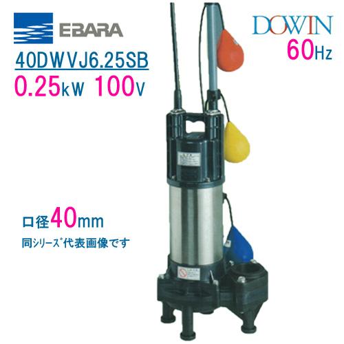 エバラ 樹脂製汚水・汚物用水中ポンプ 40DWVJ6.25SB 0.25kW 100V 60Hz 口径40mm 自動交互形 フロートスイッチ付 荏原製作所製水中ポンプ EBARA ダーウィン DOWIN