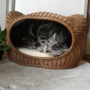 【PET】【株式会社シンシアジャパン】ラタンキティハウス【ブラウン】 JAN:4988269700397【W】