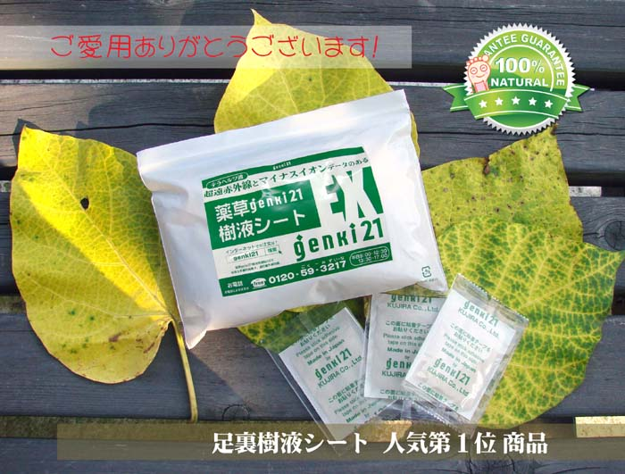 [Foot sole sheet: our most popular! Swelling in morning sukkiri! A fast sleep herb genki SAP sheets EX [52-1 set»