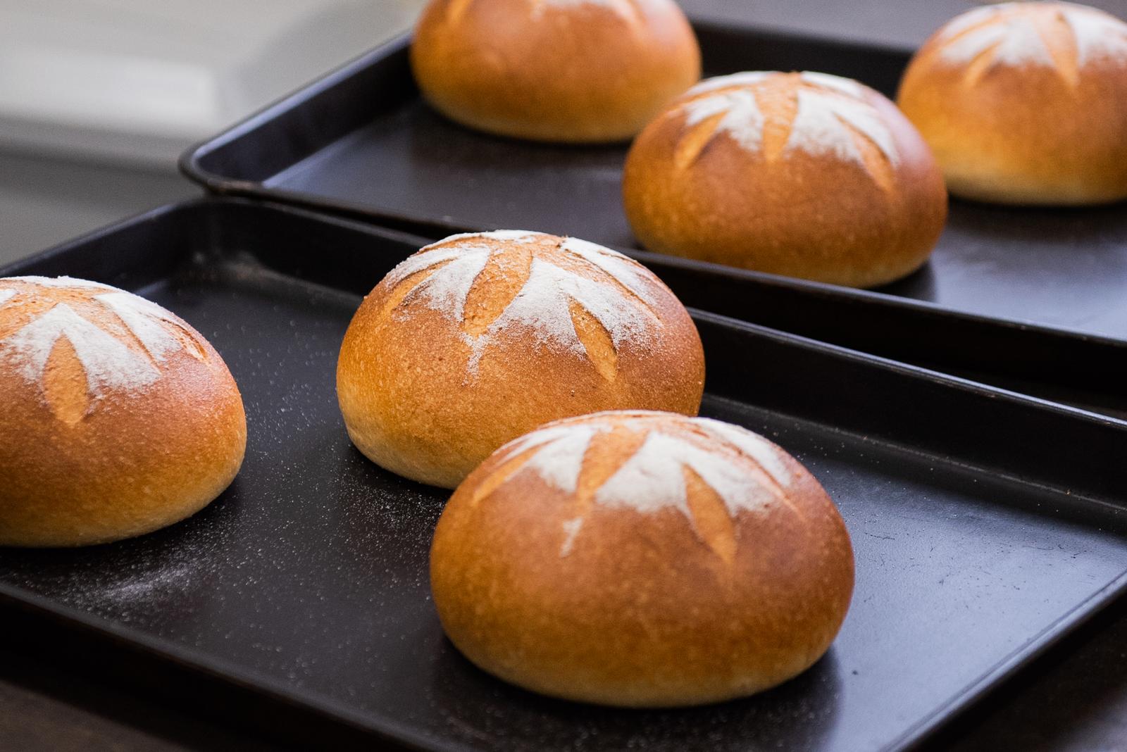 海外並行輸入正規品 自社栽培した玄米を80%以上使用して焼き上げた玄米ぱんを急速冷凍しおいしさを保ちました 自然解凍でいつでも焼きたて風味 食感が楽しめるセットです 低糖質 お取り寄せ パン 無添加 玄米ペーストカンパーニュ 2個セット 糖質制限 低カロリー 玄米パン 食パン おきかえ 伊佐米使用 送料無料 一部地域を除く プレゼント 冷凍パン 7種類14個お試しLセットと同梱で送料無料 保存食 贈り物 添加物不使用