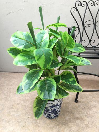 人工観葉植物 アルテシマ H70cm
