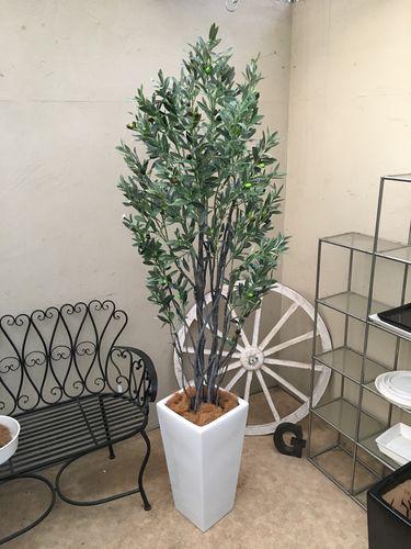 人工観葉植物 オリーブ H190-200cm