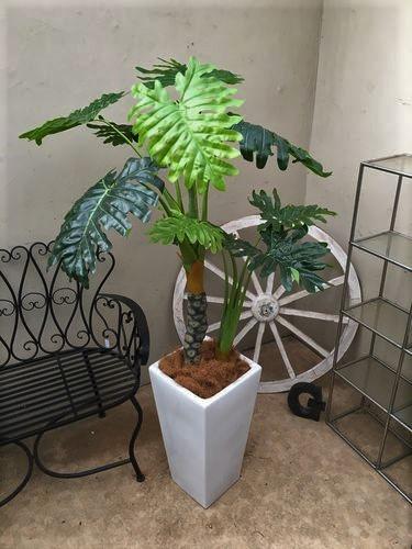 人工観葉植物 セローム H150-160cm
