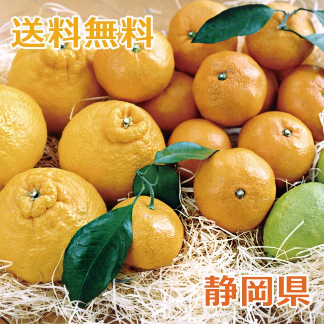 静岡浜北 柑橘類のアソートセット(温州みかん、デコポン、レモン、せとか) 3種類 合計約4kg【予約受付中】【2020年2月上旬から出荷開始予定】