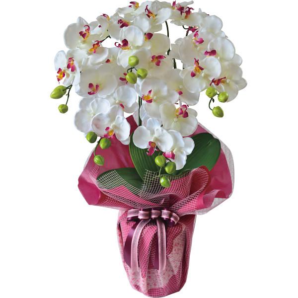 コチョウラン 5本立て(造花) SG-6045