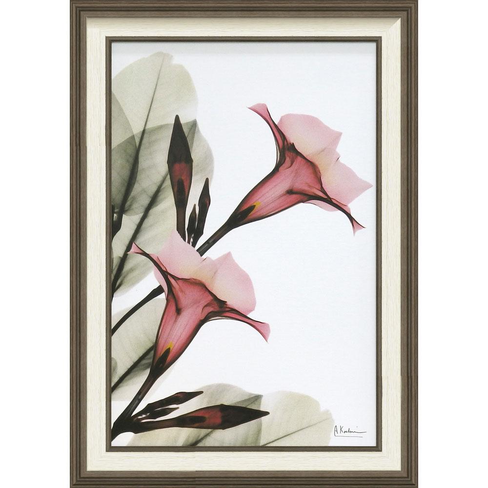 壁掛け飾り 絵画 おしゃれ かわいい | X RAY キャンバスアート 「トランペット フラワー(Mサイズ)」 | 絵画額 XR-12002 | 絵画 |