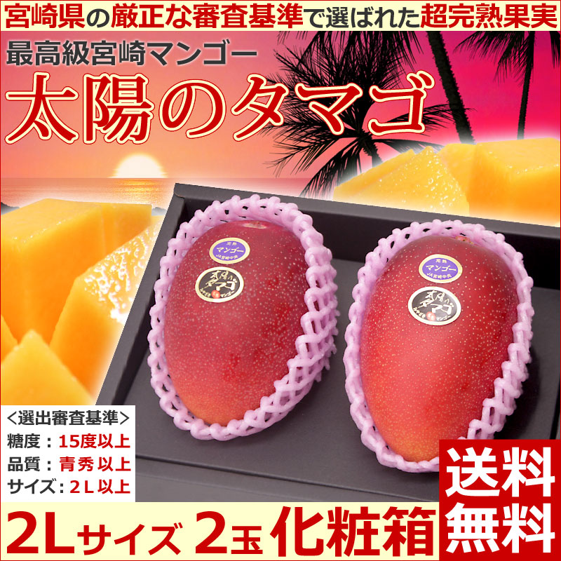 Egg of the solar egg 2L size Miyazaki mango sun