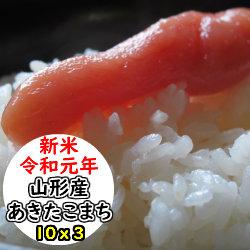 【特売価格にてご提供!!】【玄米】【送料無料】令和元年産 山形県産あきたこまち30kg選べる精米方法