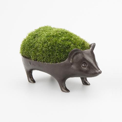 【メールマガジン希望ご選択で3%OFF!】 能作 苔盆栽 はりねずみ-青銅 (花器)