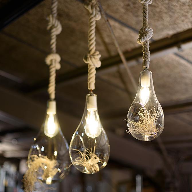ボタニックハンギングライト L ペンダントライト ハンギングライト テラリウム LEDライト LED オブジェライト インテリア 植物 グリーン おしゃれ
