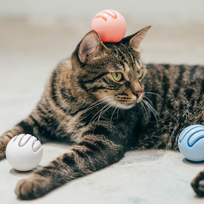 パリ発おしゃれな猫グッズ pidanの猫用おもちゃボール 猫 おもちゃ pidan ピダン Cat Toy Ball 猫用おもちゃボール 【ラッピング対応】 【メッセージカード対応】 ボール 猫おもちゃ ネコグッズ 猫グッズ 猫 ネコ ペット ペットグッズ 動物 おしゃれ