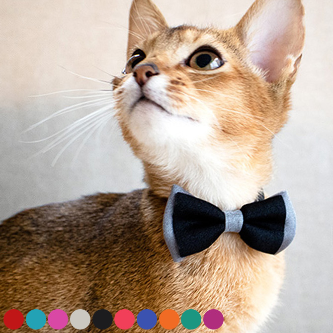 素材にこだわった猫グッズ neconoのダブルリボンの首輪 2点までメール便可 猫用 首輪 リボン necono 全国一律送料無料 ネコノ 猫の首輪 Luce 年末年始大決算 Ribbon dauble 猫用品 ダブル ギフト ペットグッズ ネコ メッセージカード対応 猫 ねこ かわいい ルーチェ ペット用品 おしゃれ