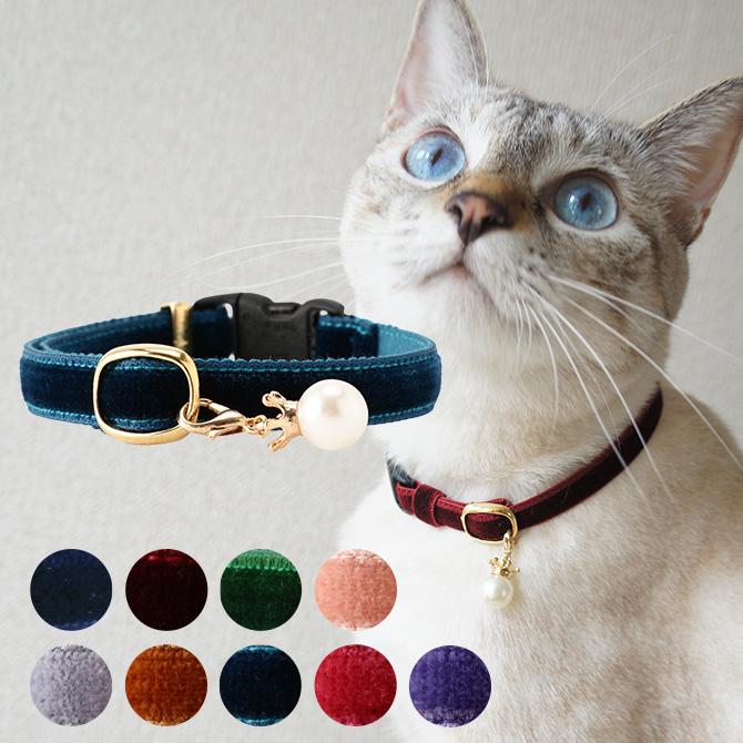 NEW 上質な光沢と滑らかな肌触りが魅力の高級感のあるベルベット素材 4点までメール便可 necotas+ ネコタス 猫首輪 ベルベット セーフティ メッセージカード対応 シンプル おしゃれ 上品 新品 猫 可愛い 首輪 安全