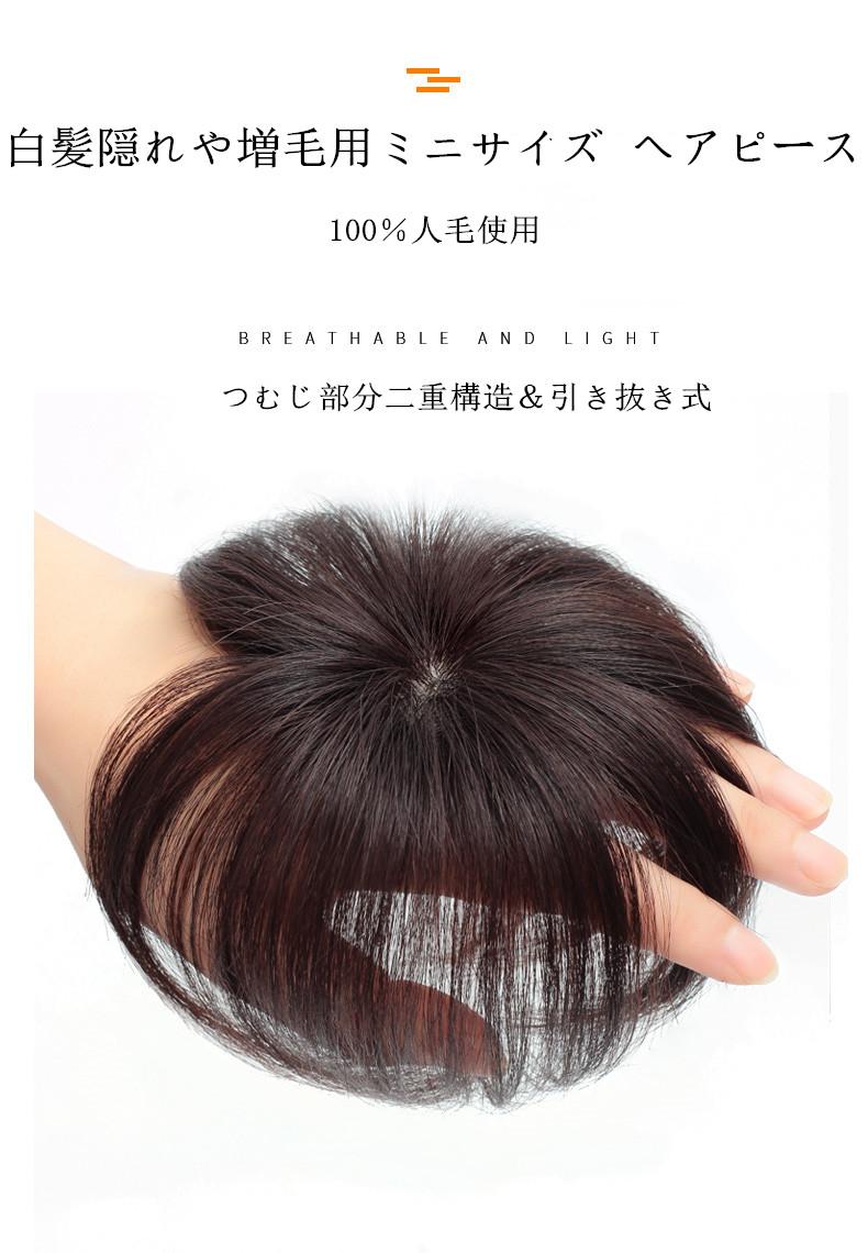 ウィッグ ヘアピース ミニサイズ かつら ポイントウィッグ 人毛100% 春の新作続々 白髪隠れ 増毛 引き抜き式 ストア ck-001689 簡単 10CM 自然