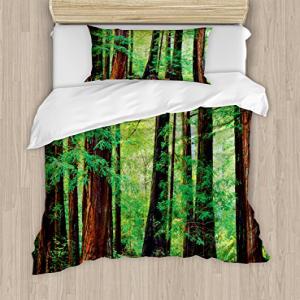 Ambesonne Woodland Duvet Cover Set, Redwood Trees Northwes