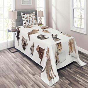 Lunarable Cat Coverlet Set Twin Size, Collection of Funny