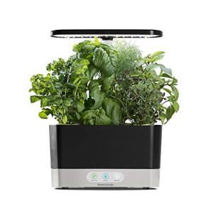 品質保証 AeroGarden Black Harvest Indoor Hydroponic Garden, 2019 Model, オブセマチ 7d50a099