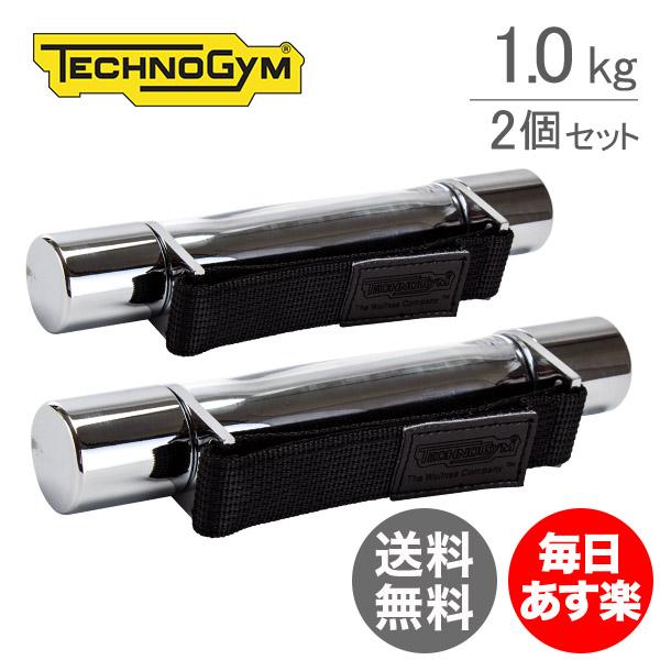 テクノジム Techno Gym ハンドダンベル(1.0kg×2個セット) ウェルネスウェイト A0000153AA シルバー WellnessTools Weight Stainless おしゃれ スタイリッシュ