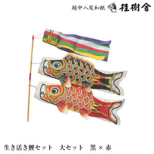 【桂樹舎】 069 鯉のぼりセット大セット(黒×赤) 日本の心がこもる【越中八尾の和紙】